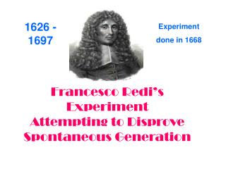Francesco Redi's Experiment  Attempting to Disprove  Spontaneous Generation