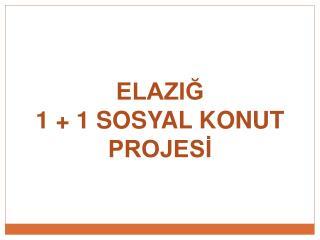 ELAZIĞ 1 + 1 SOSYAL KONUT PROJESİ