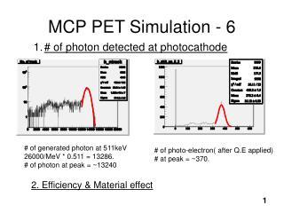 MCP PET Simulation - 6