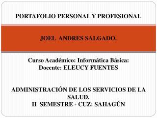 PORTAFOLIO PERSONAL Y PROFESIONAL JOEL  ANDRES SALGADO. Curso Académico: Informática Básica: