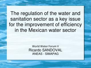 World Water Forum V Ricardo SANDOVAL ANEAS - SIMAPAG