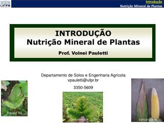INTRODUÇÃO Nutrição Mineral de Plantas Prof. Volnei Pauletti