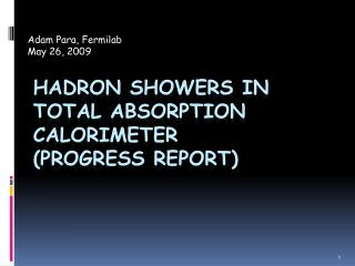 Hadron  Showers in  TOTAl  Absorption Calorimeter (progress Report)