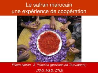 Le safran marocain une exp rience de coop ration
