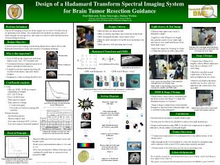 Design of a Hadamard Transform Spectral Imaging System for Brain Tumor Resection Guidance
