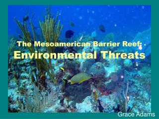 The Mesoamerican Barrier Reef: Environmental Threats