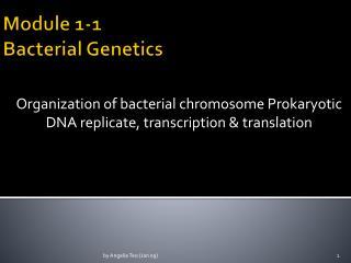 Module 1-1 Bacterial Genetics
