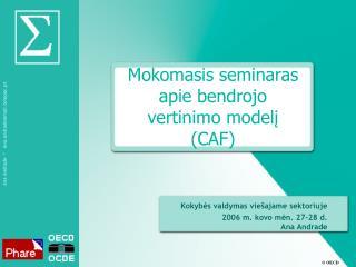 Mokomasis seminaras apie bendrojo vertinimo modelį (CAF)