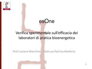 Prof Luciano Marchino    Dott.ssa Patrizia Marforio