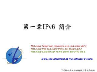 第一章 IPv6  簡介