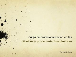 Curso de profesionalizaci n en las