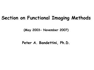 Section on Functional Imaging Methods (May 2003- November 2007) Peter A. Bandettini, Ph.D.