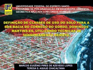 UNIVERSIDADE FEDERAL DO ESP RITO SANTO PROGRAMA DE P S-GRADUA  O EM ENGENHARIA AMBIENTAL GEOM TICA APLICADA A RECURSOS H