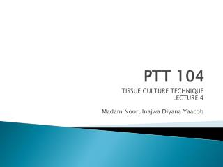 PTT 104