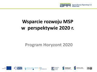 Wsparcie rozwoju MSP w perspektywie 2020 r.