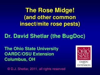 Dr. David Shetlar the BugDoc  The Ohio State University OARDC
