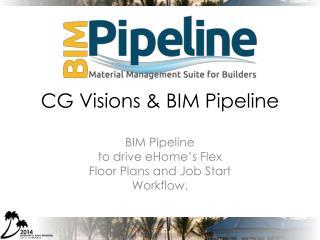 CG Visions & BIM Pipeline