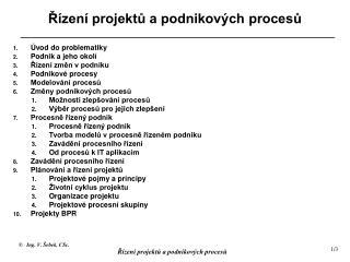 Řízení projektů a podnikových procesů