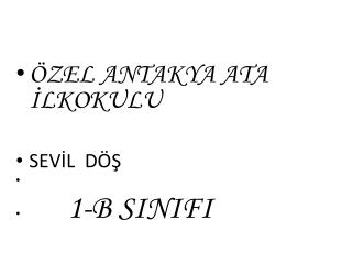 ÖZEL ANTAKYA ATA İLKOKULU                         SEVİL  DÖŞ 1 -B SINIFI