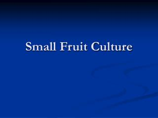 Small Fruit Culture