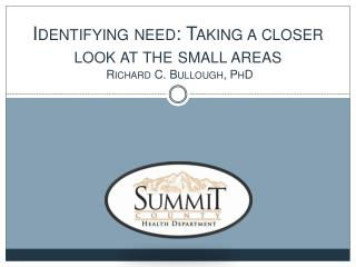 Identifying need: Taking a closer look at the small areas  Richard C. Bullough, PhD