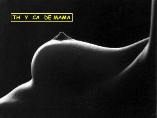 TH  Y  CA  DE MAMA