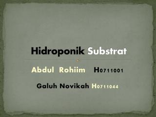 Hidroponik  Substrat