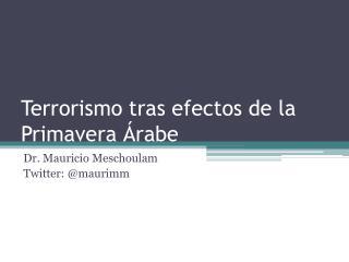 Terrorismo tras efectos de la Primavera Árabe