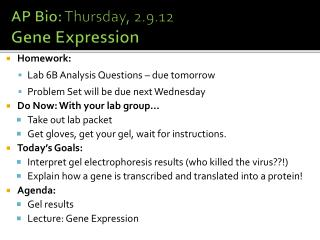 AP Bio:  Thursday, 2.9.12 Gene Expression