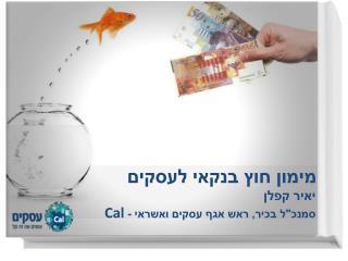 מימון חוץ בנקאי לעסקים