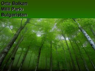 Orta  Balkan  Milli Parkı Bulgaristan