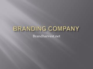 Brand Strategy Consultancy