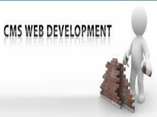 Perk Up Your Website with CMS Development