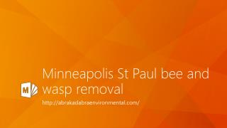 Minneapolis St Paul Bee and Wasp Removal