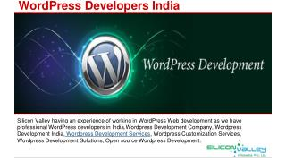 Wordpress Developers India