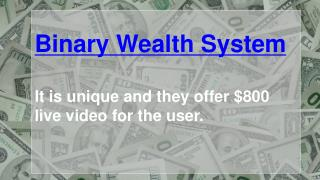 Binary Wealth System
