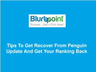 Tips To Get Recover From Penguin Update And Get Your Ranking