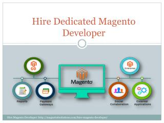 Hire Dedicated Magneto Developer
