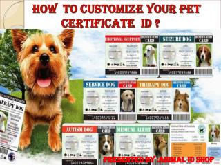 How to customize your pet certificate id