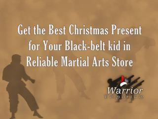 Get the Best Christmas Present for Your Black-belt kid...