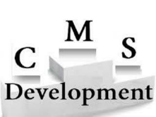 Control Your Website with CMS Development