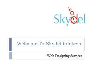 Web Designing Services Company in india - Skydel Infotech