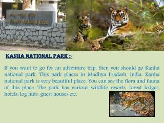 Visit Kanha National Park – Stay in Hornbill Resorts