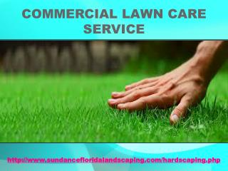 Commercial Lawn Care Service