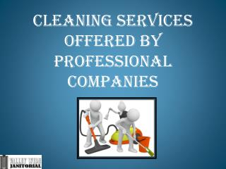 Cleaning Services Offered by Professional Companies