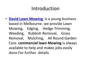David Lawn Mowing