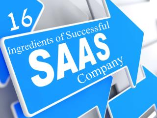 Ingredients of a successful saas company