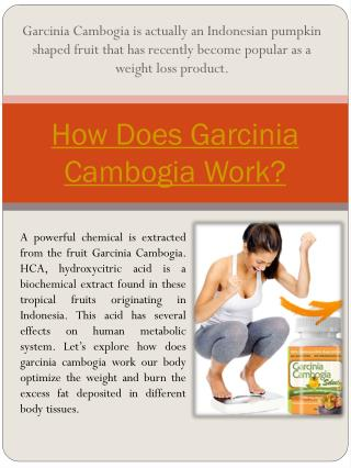 Garcinia Cambogia Side Effects