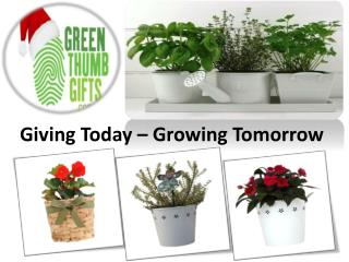 Green Thumb Gifts