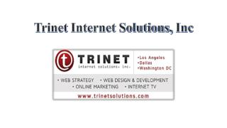 Why is Trinet Internet solutions famous web design company?
